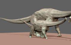 استراليا : إكتشاف مسارات ديناصور قديمة عمرها 95 مليون سنة