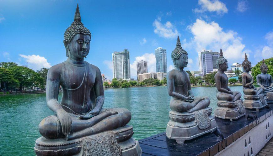 سريلانكا 5 نجوم رفاهية