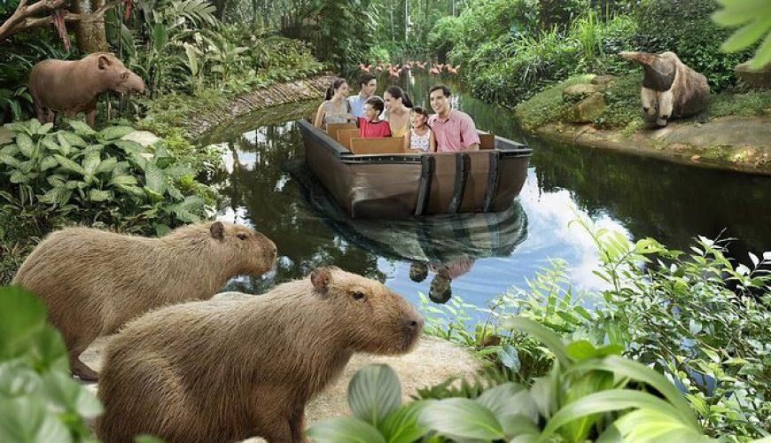 River SAfari cruise