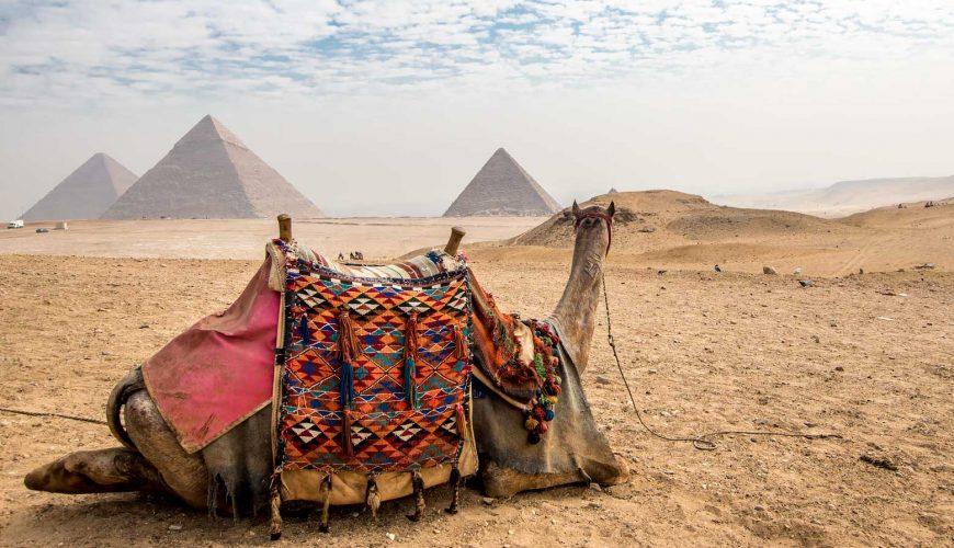 مصر 5 نجوم استثنائية